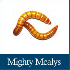 Mighty Mealys